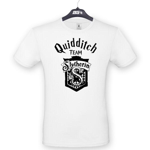 quidditch slitheryn